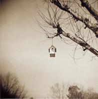 birdhouses_aloft